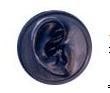 耳シリコン型